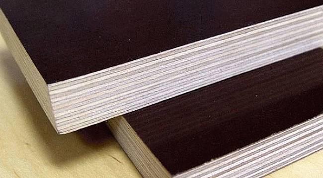 AB Plywood Kalite Standartlarını Arttırıyor