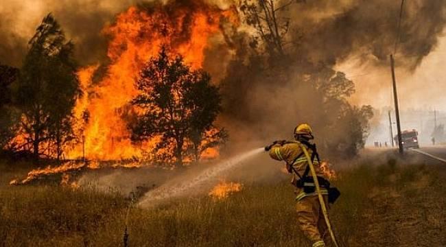 Türkiye Orman Yangınları Haritası