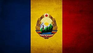 Romanya Ağaç İşleme Endüstrisi Krizde