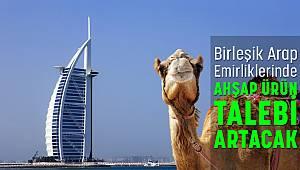 Birleşik Arap Emirlikleri'nin Ahşap Ürün Talebi Artacak!