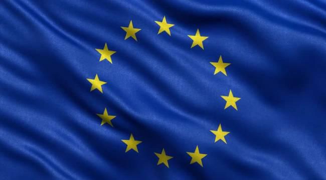 AB ve Ukrayna Tomruk Yasağı İçin TOPLANIYOR