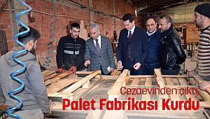 Cezaevinden çıktı palet fabrikası kurdu