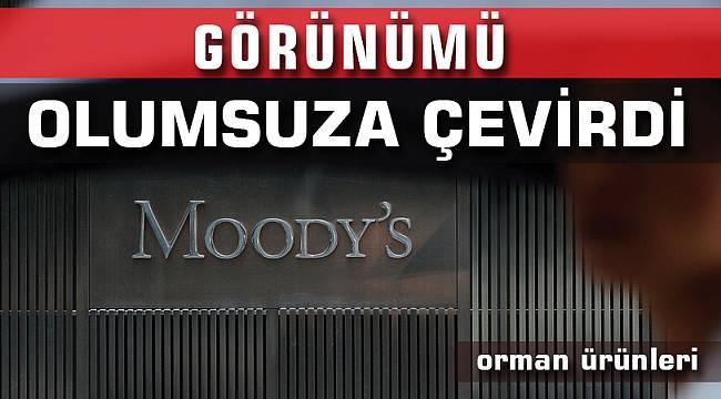 Moody's KüreselOrmanÜrünleriSanayinin Görünümünü olumsuza çevirdi