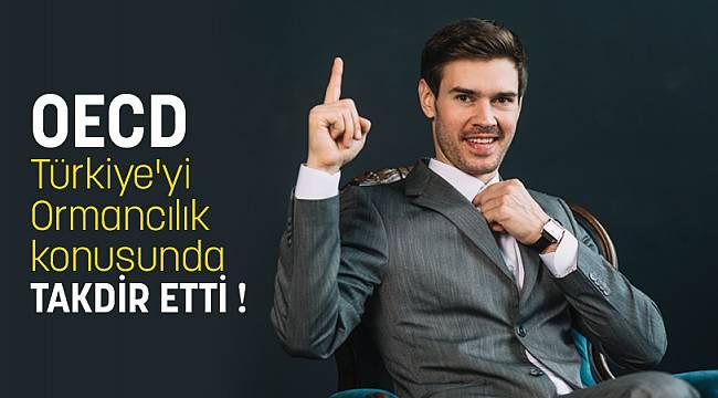 OECD Türkiye'yi Ormancılık konusunda TAKDİR ETTİ !