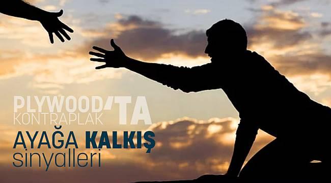 PLYWOOD/KONTRPLAK'TA AYAĞA KALKIŞ SİNYALLERİ! (YAVAŞ YAVAŞ)
