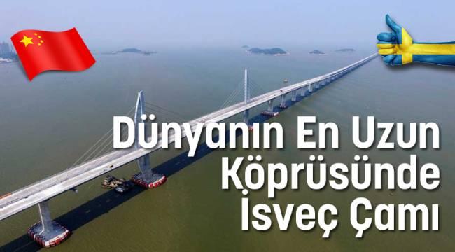 Dünyanın En Uzun Köprüsünde İsveç Çamı