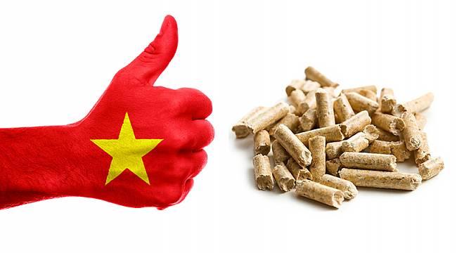 Vietnam İKİYE KATLADI