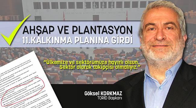 AHŞAP ve PLANTASYON 11.KALKINMA PLANINA GİRDİ!