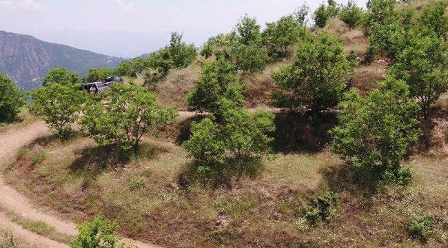 Orman Köyleri Gelir Getirici Ağaç Modeliyle Kalkınıyor