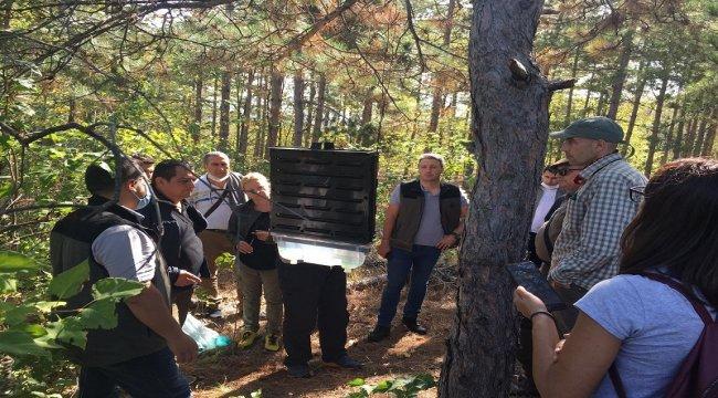 Sağlıklı Ormanlar Projesi İki Kardeş Ülkeyi Buluşturdu.